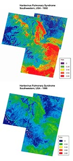 Thumbnail of Comparison of predicted HPS risk for 1993 (top) and 1996 (bottom) by satellite imagery taken in 1992 and 1995, respectively, in the study area. Low-risk areas are in dark blue and high-risk areas are in red and yellow. There was a significant reduction in predicted high-risk areas in 1996 compared with 1993.
