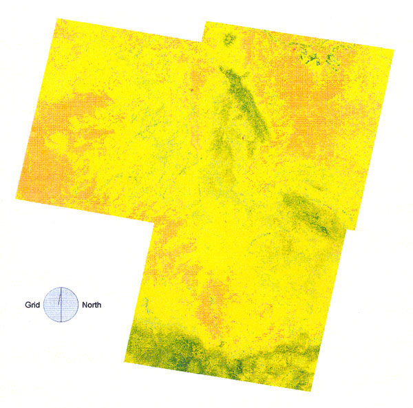 The normalized difference vegetation index (NDVI) scores of the study area by Thematic Mapping bands 3 and 4. Vegetation growth increased from brown though yellow to green. There was a substantial portion of high-risk area (especially the eastern portion of the image) where the NDVI image pixels did not obviously correspond to high-risk areas (see Figure 3 for comparison).
