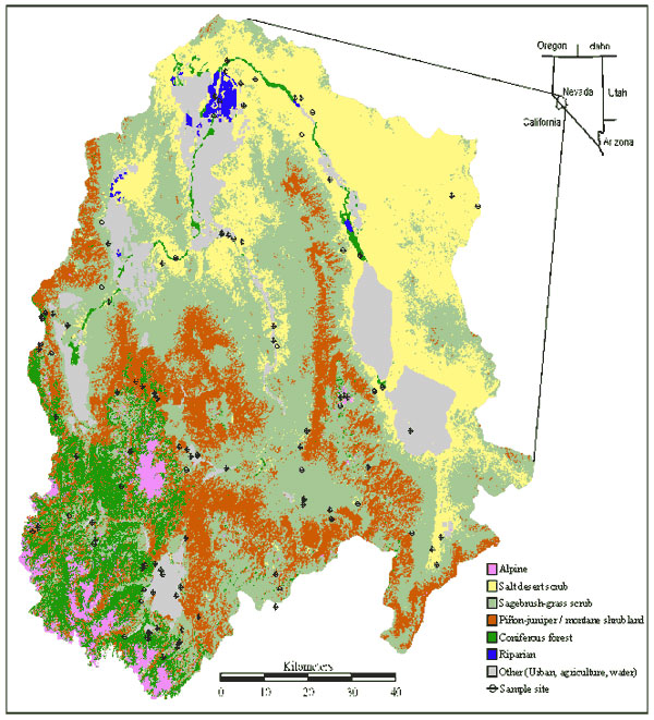 Location of Walker River Basin (17) and its eight major vegetation types, as well as developed areas. Piñon-juniper woodland and montane shrubland tend to be highly interspersed and were combined for visual clarity. Because meadows occurred in very small patches, they could not be represented on this map. Map generated at Utah State University as part of the GAP conservation mapping project.