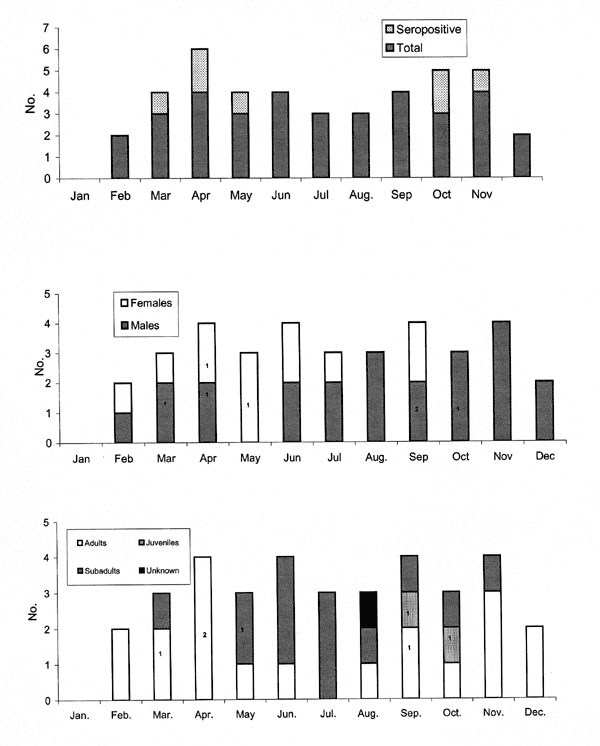 Temporal patterns of deer mice trapped in urban and suburban homes, November 1996 to September 1999. Numbers inside bars indicate seropositive mice.