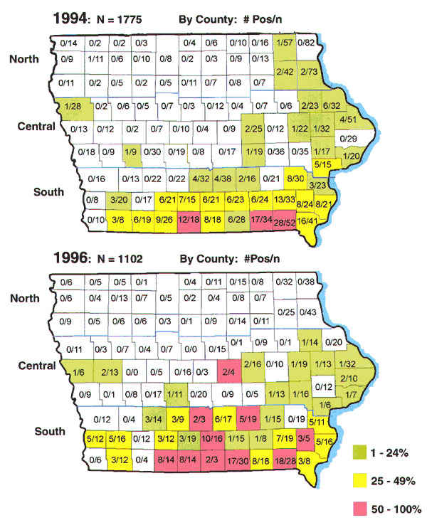 Iowa maps showing Ehrlichia chaffeensis seropositive specimens by county. The total number of positive specimens was 102 of 1,775 in 1994 (top map) and 91 of 1,102 in 1996 (bottom map). Within each of the 99 counties is listed the number of positive specimens over the total submitted for the county. Colors indicate the percentage of positive specimens as listed in the key.