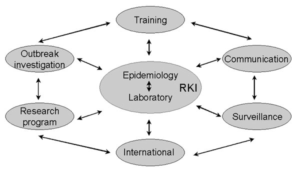 Integrated strategies used by the Robert Koch Institute (RKI) for the development of applied infectious disease epidemiologic capacity in Germany.