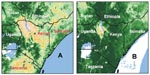 Thumbnail of Figure 1 - Images from advanced, very high resolution radiometer instrument on a National Oceanic and Atmospheric Administration satellite comparing normalized difference vegetation index data (as a surrogate for rainfall), from December 1996 (A) and December 1997 (B). Increasing vegetation is depicted from tan to yellow [predominating in part (a)], to light and dark green [predominating in (b)].