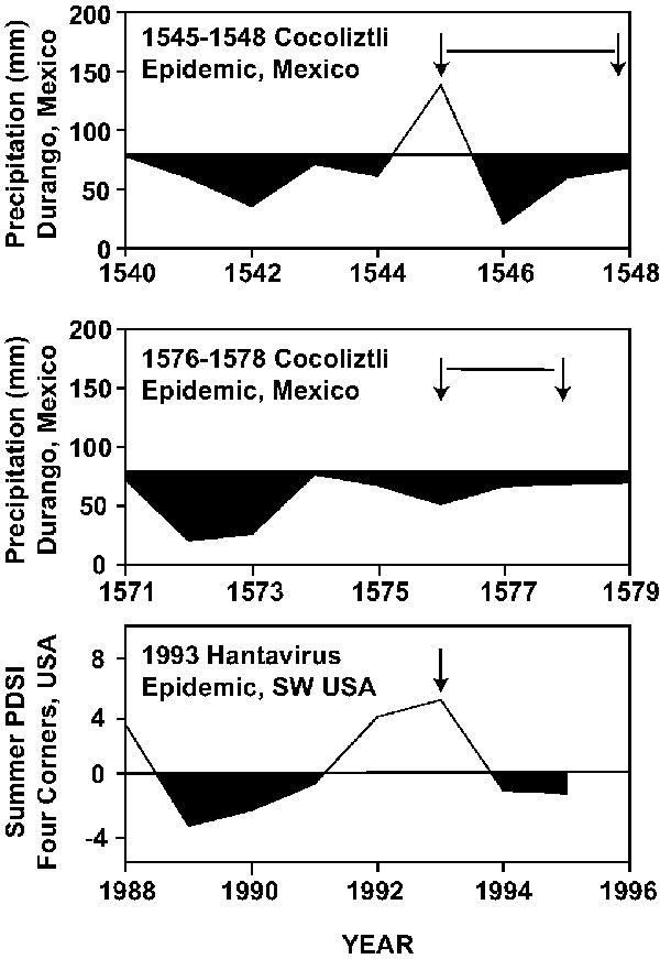 The winter-spring precipitation totals estimated for each year in Durango, 1540–1548 (top), 1571–1579 (middle). Compared with the Palmer drought index, southwestern USA 1988–1995 (bottom). A tenfold increase in deer mice was witnessed in the southwestern USA during the 1993 outbreak, a year of abundant precipitation following a prolonged drought. The similar dry-wet pattern reconstructed for the 1545 epidemic of cocoliztli may have impacted the population dynamics of the suspected rodent host to aggravate the epidemic.