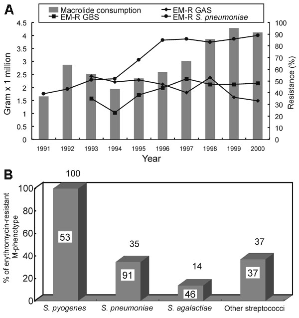 A, Macrolides consumption (gram x 1000,000) in Taiwan and the trends of erythromycin-resistant group A Streptococcus (EM-R GAS), group B Streptococcus (EM-R GBS), and S. pneumoniae in National Taiwan University Hospital from 1991 to 2000. Macrolides include intravenous and oral forms of erythromycin and oral forms of clarithromycin, roxithromycin, and azithromycin. B,. Distribution of erythromycin-resistant M-phenotype among isolates of streptococci. Other streptococci include Groups C, F, and G