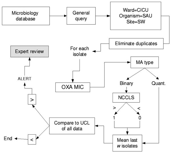 Data-processing methodology for moving averages. CICU, cardiac intensive care unit; SAU, S. aureus; SW, surgical wound; OXA MIC, oxacillin minimum inhibitory concentration; MA, moving average chart; NCCLS, National Committee on Laboratory Standards, antibiotic susceptibility breakpoint; UCL, upper control limit.