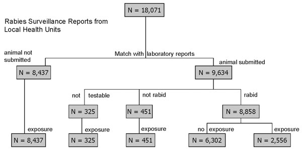Matching of rabies surveillance reports from local health departments and laboratory reports for submitted animals by test result and human exposure, New York, 1993–1998.