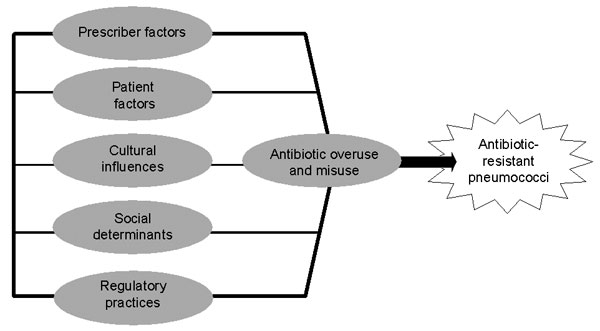 Framework of nonmicrobiologic factors influencing outpatient antibiotic use and prevalence of pneumococcal resistance.