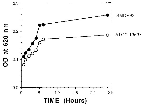 Graph showing kinetics of adherence by SMPD92 and ATCC 13637. Bacteria were allowed to bind to the plastic for 72 h and then were stained with crystal violet. Bacterial uptake of the dye was measured at 620 nm. Closed and open circles represent SMDP92 and ATCC13637, respectively.
