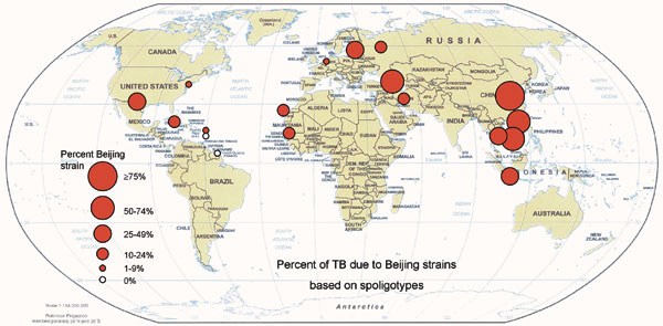 Percentage of tuberculosis due to Beijing strains. Data from studies based on spoligotyping (Table 1).