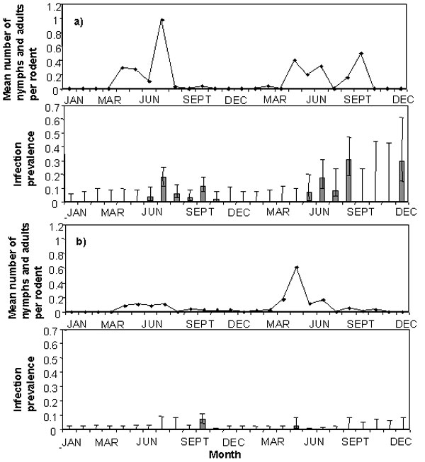 Prevalence of infection of Anaplasma phagocytophila (bar graphs +/- exact binomial errors) in blood samples collected from bank voles (graph marked a) and wood mice (graph marked b) compared to the mean monthly numbers of nymphal and adult Ixodes trianguliceps ticks counted per rodent at the time blood samples were collected (line graphs), 1997–1998.