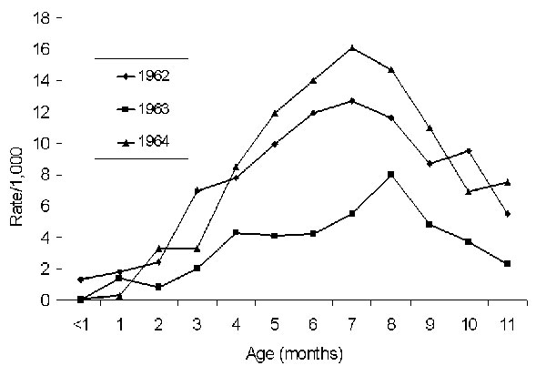 Age-specific hospitalization rates/1,000 infants with dengue hemorrhagic fever/dengue shock syndrome, Bangkok, Thailand, 1962–1964. Source: Halstead SB, et al. Am J Trop Med Hyg (17); cited with permission.