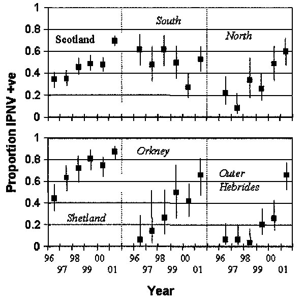 Prevalence of infectious pancreatic necrosis virus in Scottish marine salmon production sites by region and year. The regions are northern mainland Scotland, southern mainland Scotland, Shetland, Orkney, and the Outer Hebrides. Bars show 95% confidence intervals.
