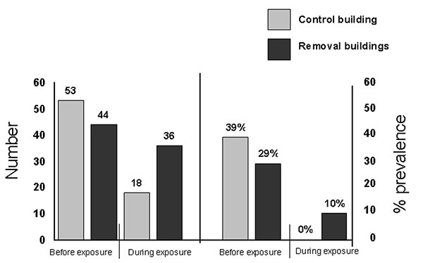 Number and Sin Nombre virus–antibody prevalence in deer mice found in removal and control buildings, Montana. Data combined from previous study (left side, [3]) and from experiments conducted in fall 1999 and spring 2001 (right side).
