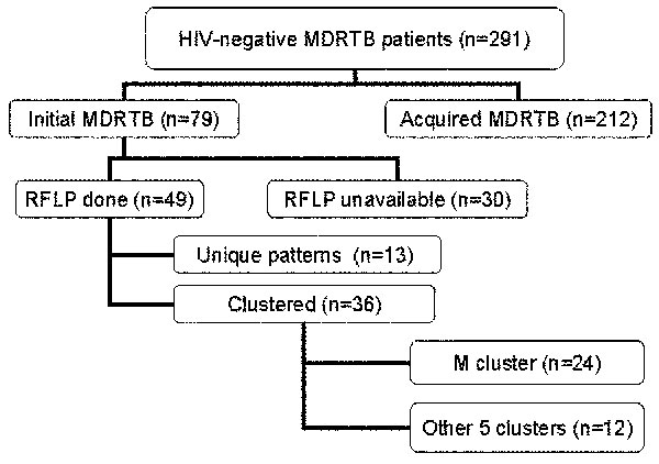 HIV-negative multidrug-resistant tuberculosis groups investigated. MDRTB, multidrug-resistant tuberculosis; RFLP, restriction fragment length polymorphism.