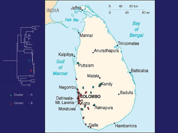 Map of Sri Lanka showing location of rabies samples included in this study. Green, cluster A; red, cluster B.