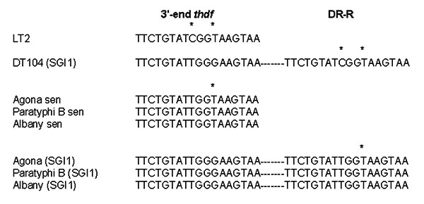 Alignment of the direct repeats (DR) flanking the Salmonella genomic island 1 (SGI1) in serovars Typhimurium DT104 (DT104), Agona, Paratyphi B, and Albany. Asterisks represent nucleotide substitutions. Sen, sensitive.