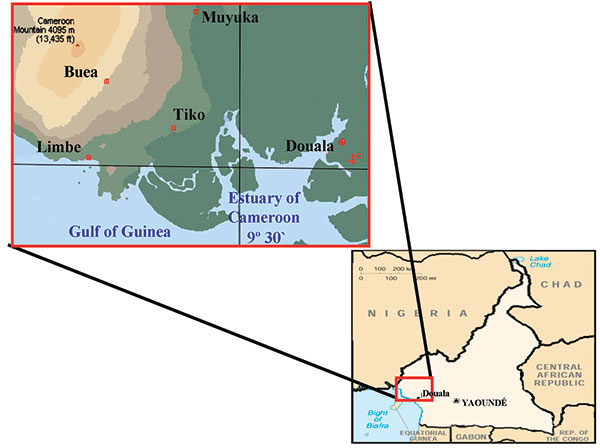 Location of townships in South West Province of Cameroon where samples were obtained.