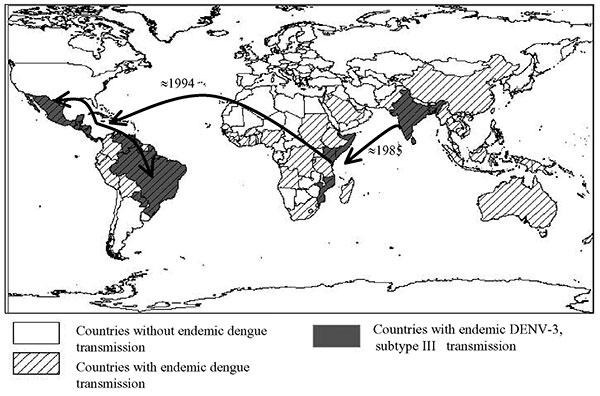Global spread of dengue virus 3 (DENV-3), subtype III, which has been continuously circulating in the Indian subcontinent from the 1960s to the present. The virus was first isolated from East Africa in 1985 in Mozambique and subsequently from Kenya (1991) and Somalia (1993) (32,33). DENV-3 subtype III was first detected in the American continent in 1994 (Nicaragua and Panama) and the virus has subsequently spread through most of Latin America (13,14,16,29,30). The arrows depict the most likely d