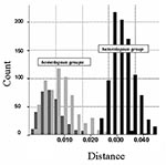 Thumbnail of Histogram of the observed distances (Kimura two parameters method) within Canary Islands and Iberian Peninsula groups (dark gray) and between them (light gray). Analysis of variance (ANOVA) (one-way) test results: F=5238 (p=0.000). Distances within homologous groups: Canary Islands (light gray): mean 0.008 (standard deviation [SD] 0.004; n=351); Iberian Peninsula (dark gray): mean 0.010 (SD0.006; n=666). Distances between heterologous groups (black): mean 0.033 (SD 0.005; n=999).