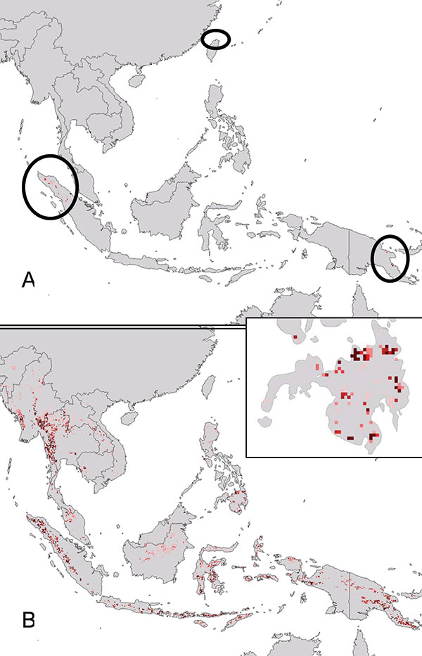Projection of filovirus ecologic niche models onto southeastern Asia and the Philippines to assess the degree to which possible Philippine distributional areas are predictable on the basis of the ecologic characteristics of African filovirus hemorrhagic fever (HF) occurrences. (A) Projection of model for Marburg HF occurrences (Figure 1D) to southeastern Asia. (B) Projection of model for all filovirus disease occurrences (Figure 1B) to southeastern Asia (the projection of models for Ebola HF occ