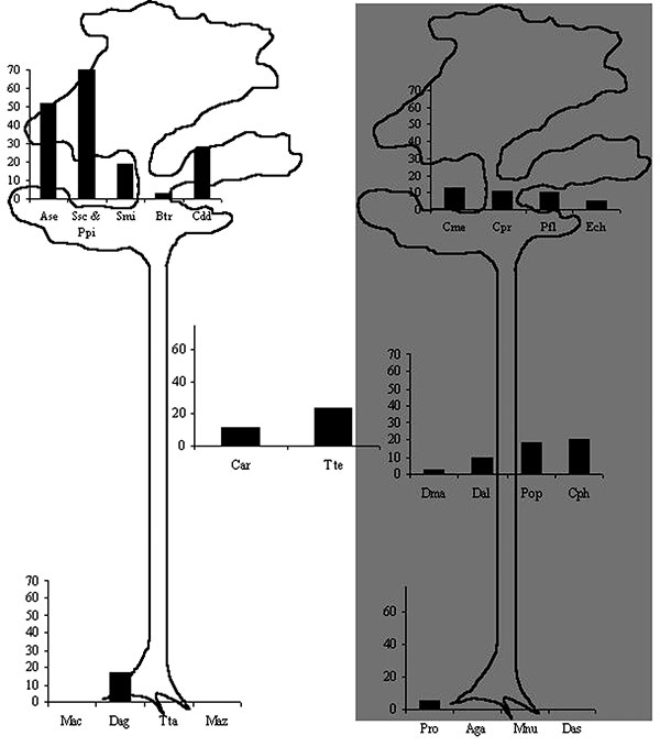 Mayaro virus seroprevalence rates in Neotropical mammal species, according to 1) activity period of animals (diurnal species on the left, nocturnal species on the right, diurnal and nocturnal species in the center); 2) vertical use of space (terrestrial, arboreal, or both).