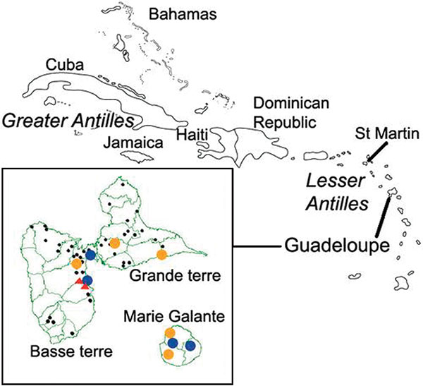 Location of Guadeloupe archipelago within the Caribbean. Insert: locations of horse and chicken sampling places in Guadeloupe and Marie Galante Islands. Red triangle, farm with seropositive chicken; blue circle, equine center with seropositive horses identified from July 2002; gold circle, equine center with seropositive horses identified from December 2002 to January 2003; black circle, equine center with no seropositive horses.