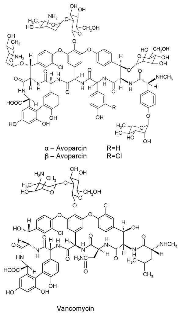 Chemical structures of avoparcin and vancomycin.