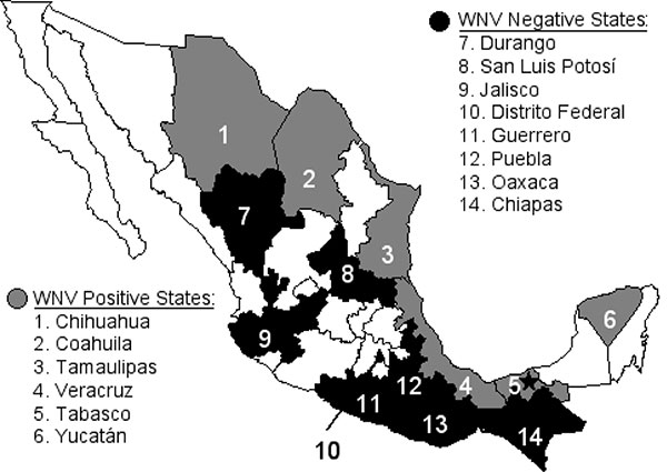 Map showing the Mexican states sampled for antibodies to West Nile virus and Venezuelan equine encephalitis virus in equines. Unshaded states were not sampled. The location of the West Nile virus isolation from a dead Common Raven is shown by a star.