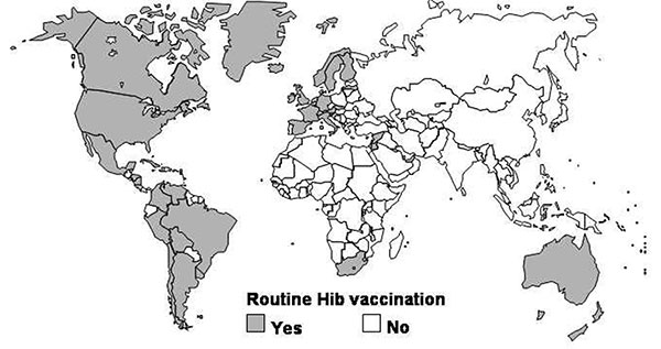 Global status of countries using Hib conjugate vaccine in their national immunization program in 2001 (J. Wenger, WHO, unpub. data).