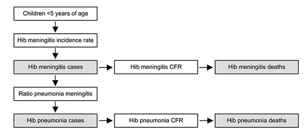 The meningitis incidence rate method for calculating Haemophilus influenzae type b (Hib) disease rate by using the Hib rapid assessment tool. White boxes are data input points and gray boxes are disease rate estimates.