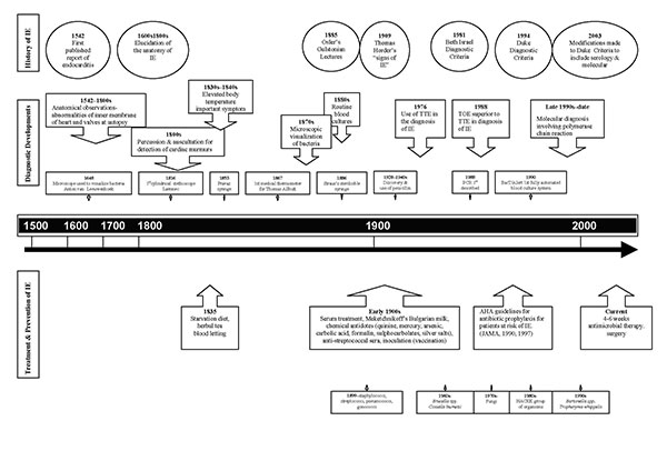 Historial timeline describing concurrent developments regarding the history of emerging causal agents of infective endocarditis (IE), diagnostic developments, treatment options, and diversity of causal agents.