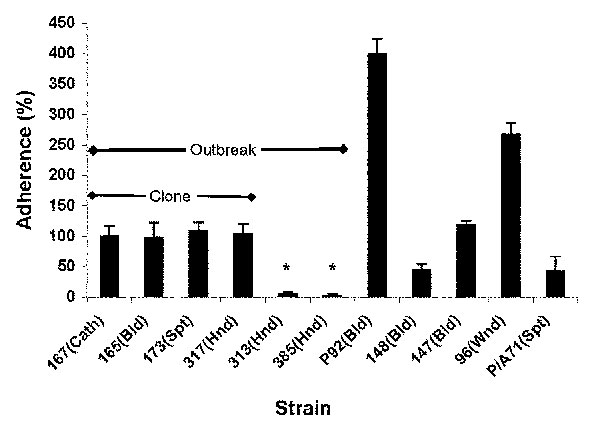 Adherence properties of Candida parapsilosis clinical isolates. Graph shows adhesion ability of various C. parapsilosis strains, compared to strain 167 from the Centers for Disease Control and Prevention. Results were normalized to strain 167, which was taken as 100%. Each result is representative of at least two experiments. Error bars represent standard deviation. *p < 0.001 for comparison of values of strain 167 vs. strains 313 and 385; all other comparisons had p values > 0.05. (For de
