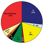 "Thumbnail of Distribution of subtypes and recombinant viruses. The pie chart represents 66 strains for which sequences from at least 2–3 gene regions were available for comparison; the subtypes in the pie chart represent concordant phylogenies suggestive of possible ""pure"" subtypes; the CRF01 and unique recombinant viruses are indicated in the pie chart. Table 2 summarizes subtypes of unique recombinant viruses."