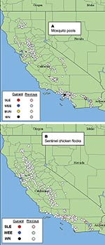 Thumbnail of Map of California showing locations where (A) 9,731mosquito pools were collected and (B) 212 sentinel chicken flocks were located through November 1, 2003. Data are cumulative for 2003 and show negative, previously positive, and currently active sites as downloaded from http://www.vector.ucdavis.edu/. SLEV, St. Louis encephalitis virus; WEEV, western equine encephalitis virus; BUNV, viruses in the California encephalitis virus complex, family Bunyaviridae; WNV, West Nile virus.