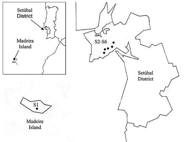 Collection sites in Madeira Island and Setúbal District, mainland Portugal. S, collection site.