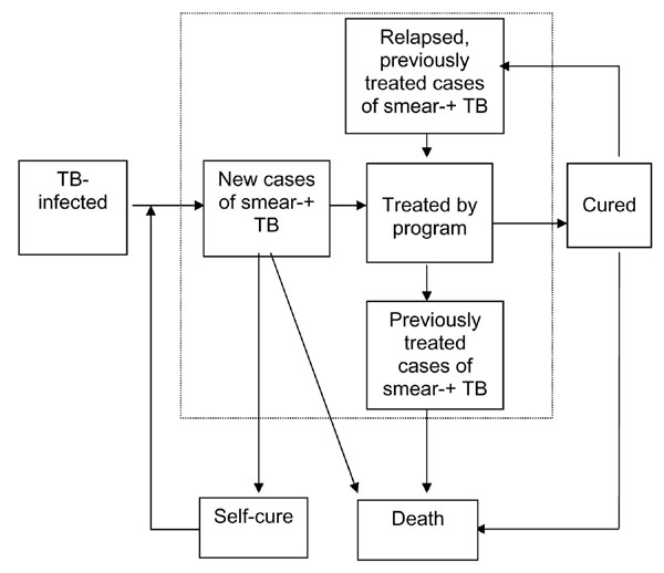 Model 1, used by Styblo, of tuberculosis case detection and treatment outcome in tuberculosis control program. Prevalent cases are those within dotted line.