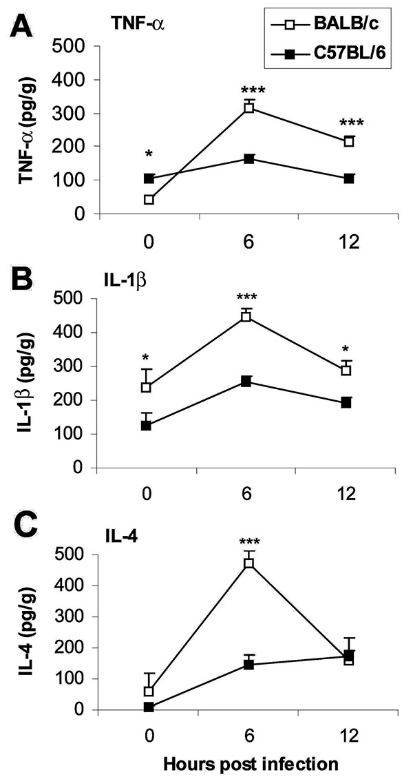 Proinflammatory cytokines are increased in the hearts of susceptible mice during the innate immune response. Susceptible BALB/c mice were compared to resistant C57BL/6 mice for the level tumor necrosis factor (TNF)- α (A), interleukin (IL)-1β (B), and IL-4 (C) cytokines in heart homogenates 6 and 12 hours after CB3 infection. Data are represented as the mean ± standard error of the mean. *p < 0.05; ***p < 0.001. Modified from (33).