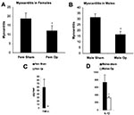 Thumbnail of Sex hormones increase myocarditis in female and male mice by increasing interleukin (IL)-1β and tumor necrosis factor (TNF)-α levels in the heart. Susceptible female (A,C) and male (B,D) BALB/c mice underwent gonadectomy (Fem op/Male op) and were compared to sham-operated controls (Fem sham/Male sham) for the level of myocarditis (% inflammation) and cytokines (pg/g) in the heart after CB3 infection. CB3 myocarditis was assessed for (A) female mice and (B) male mice after the operat