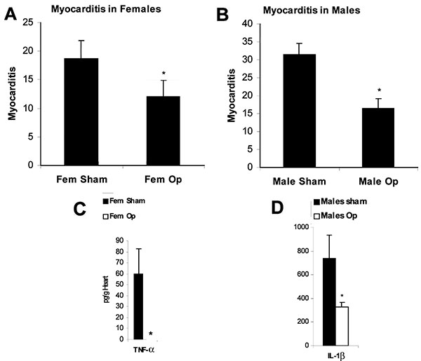 Sex hormones increase myocarditis in female and male mice by increasing interleukin (IL)-1β and tumor necrosis factor (TNF)-α levels in the heart. Susceptible female (A,C) and male (B,D) BALB/c mice underwent gonadectomy (Fem op/Male op) and were compared to sham-operated controls (Fem sham/Male sham) for the level of myocarditis (% inflammation) and cytokines (pg/g) in the heart after CB3 infection. CB3 myocarditis was assessed for (A) female mice and (B) male mice after the operation. Data are