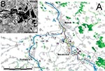 Thumbnail of A), Potential foci of mosquitoborne viruses in the Mělník area. Floodplain forests identified on the Landsat MSS satellite images (dotted red line), with hydrology and settlement in background (DMU-200, VTOPÚ Dobruška), and proportion of Tahya virus seropositive residents at particular localities (large, medium, and small circles indicate the risk zones A, B, and C, respectively). B) [inset], radar satellite image of the conflux of the Labe and Vltava Rivers on August 17, 2002 (2 da
