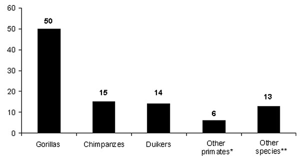 Species distribution of carcasses found in the forest straddling the border between Gabon and Republic of Congo (2001–2003). * = other primates: Cercopithecus sp.; † = other species: Atherurus africanus (1), Genetta sp (3), Loxodonta africana (1), Manis sp (1), Mongoose sp (1), Thryonomys swinderianus (2), Tragelaphus sp (1), Python sebae (2), and bird of prey (1).