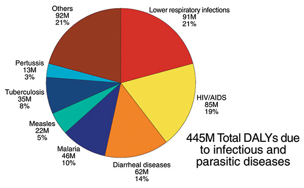 Leading causes of disability life years (DALYs) due to infectious and parasitic diseases. Lower respiratory infections, HIV/AIDS, diarrheal diseases, and malaria are among the infectious diseases that contribute to the most DALYs lost each year throughout the world (6).