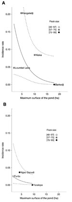Thumbnail of Serologic incidence rate of Rift Valley fever in small ruminants (N = 610), according to the location of the pond (A, in Ferlo River bed; B, outside Ferlo River bed) and its maximum surface during the 2003 rainy season in the Barkedji area, Senegal. Points indicate observed pond-level serologic incidence. Solid line indicates population mean of the serologic incidence estimated with the best Bayesian information criterion mixed-effect logistic regression model. Dashed lines indicate