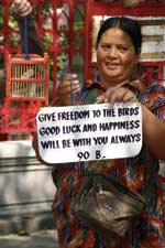 Thumbnail of Vendor selling wild-caught birds for release at a religious shrine in Thailand. (Photo by W.B. Karesh.)