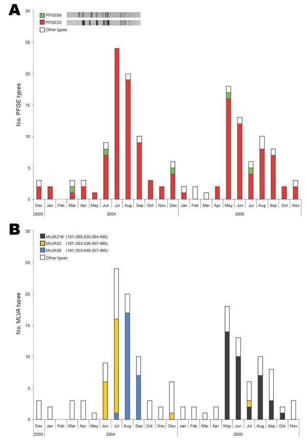 Monthly occurrence of pulsed-field gel electrophoresis (PFGE) types (A) and multiple-locus variable-number tandem-repeat analysis (MLVA) types (B) within Salmonella Typhimurium isolates with phage type DT12 over the 2-year study period. All PFGE and MLVA types that occurred <4× were included in other types.