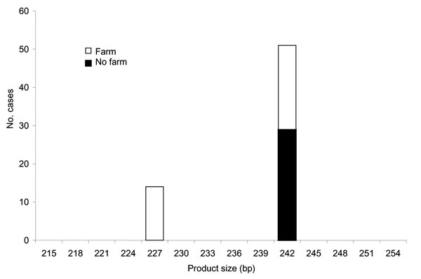 Product size at microsatellite locus ML1 with number of Cryptosporidium parvum case-patients who touched or handled farm animals before onset of illness.