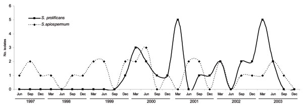Epidemiologic curve of isolation of Scedosporium spp. isolation, Australia, June 1997–December 2003. S. prolificans was first identified in December 1999 and had 2 peaks that coincided with construction work. S. apiospermum was isolated at a constant rate of 1–2 times per 3-month period.