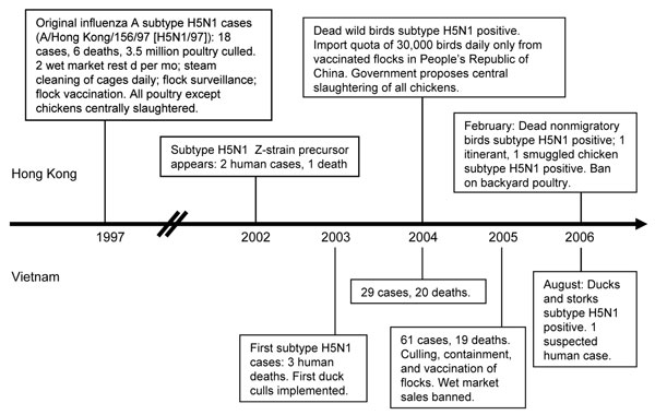 Chronology of influenza A (H5N1) outbreaks and responses, Hong Kong and Vietnam. Double slashes represent a break in the timeline.