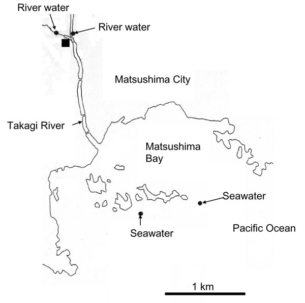 Locations in Miyagi Prefecture, Japan from which water was isolated. The solid square shows the location of the wastewater treatment plant (sampling site of untreated and treated wastewater).